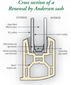 Renewal by Andersen Window Cross Section